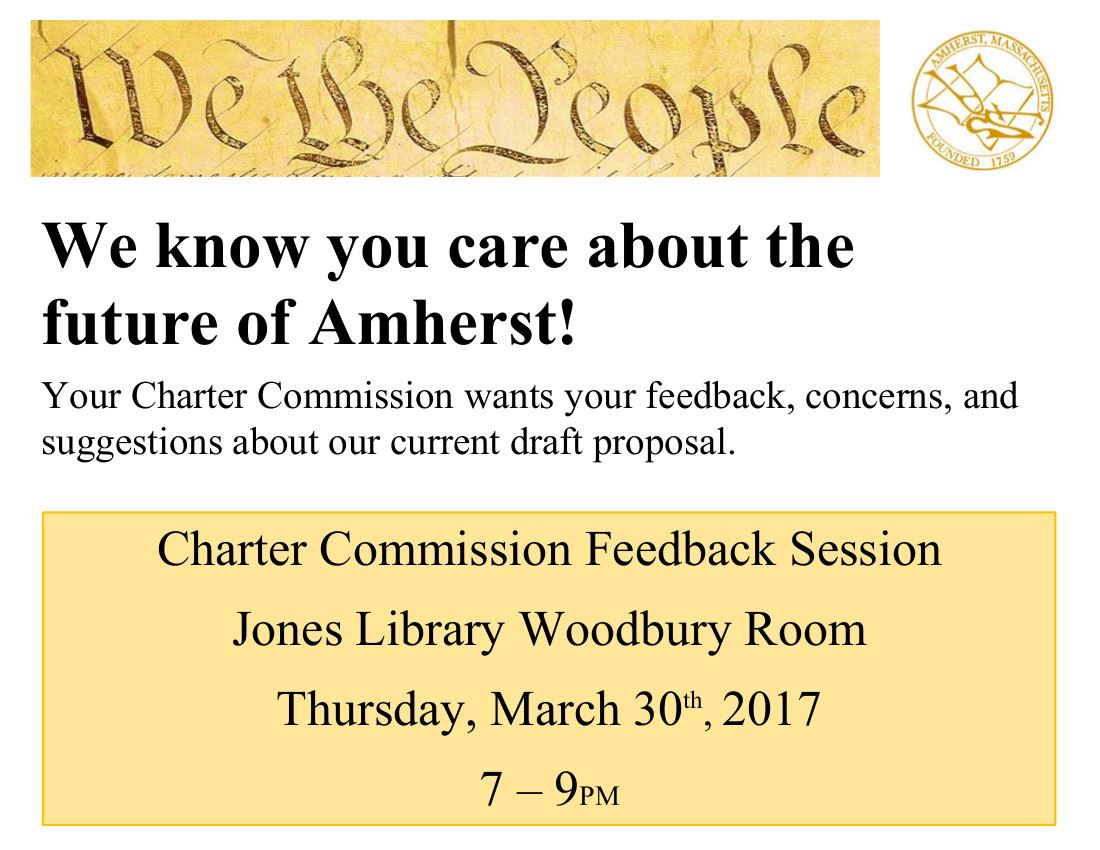 Charter Commission March 30 Feedback Session Promo