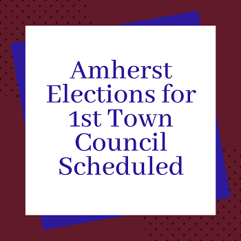 Town Council Election News Item