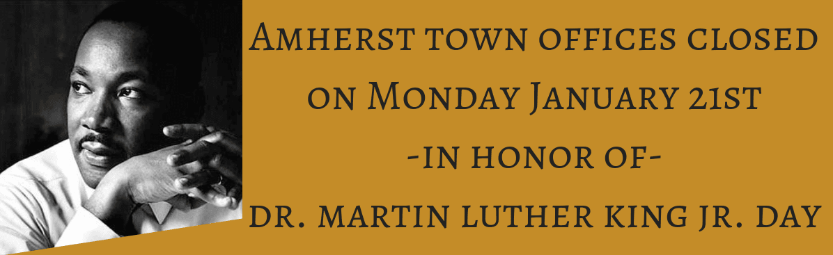 amherst town offices MLK banner 2019