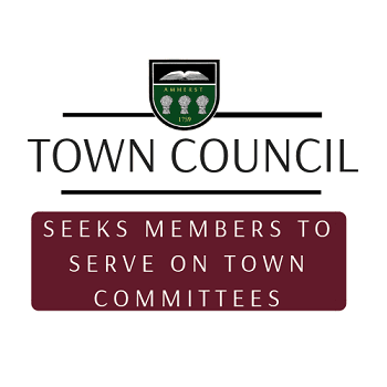 town council serve on committees news