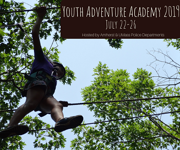 APD Adventure Academy 2019 child walking on ropes course in trees