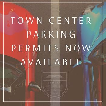 Parking Permit red car blue car parked