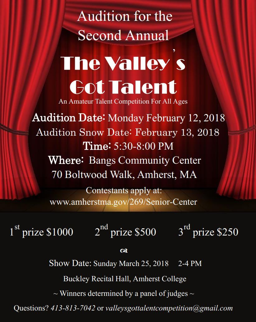 Valleys got Talent Photo Flyer