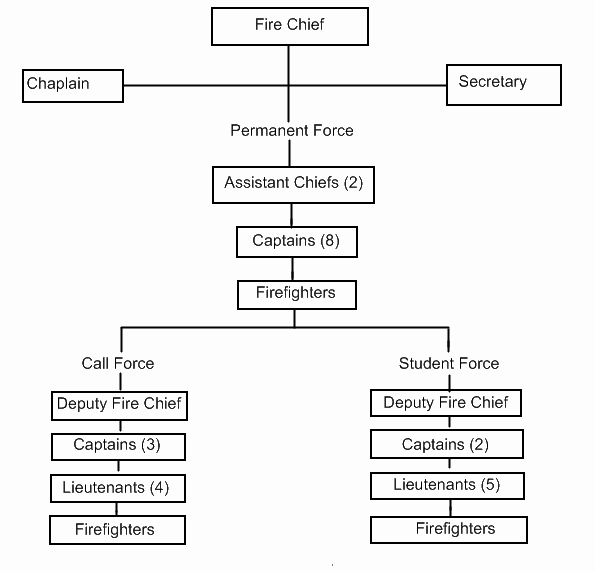 Fire Department organizational chart