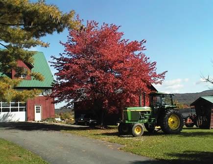 Fall Farm